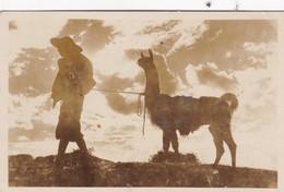 SANS DESCRIPTION: COYA Y LLAMA, BOLIVIA. CPA VOYAGEE CIRCA 1946's  - BLEUP - Bolivie