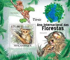 Mozambique 2011 Fauna Tarsier ,monkey - Sao Tome And Principe