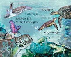 Mozambique 2011 Fauna  Turtles - Mozambique
