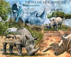 Mozambique 2011 Fauna - Rhinos - Mozambique