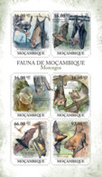 Mozambique 2011 Fauna Bats - Mozambique