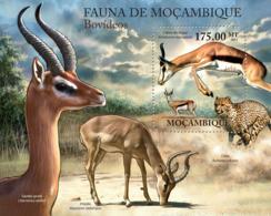 Mozambique 2011 Fauna  Antelopes - Mozambique