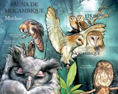 Mozambique 2011 Fauna- Owls - Mozambique