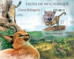 Mozambique 2011 Fauna  Caracal ,leopard - Mozambique