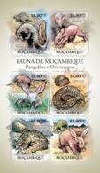 Mozambique 2011 Fauna  Pangolins &  Aardvarks - Mozambique