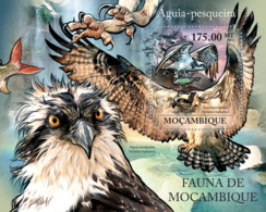 Mozambique 2011 Fauna Osprey ,bird Of Prey - Mozambique