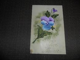 Carte Celluloïd ( 83 )  En Celluloïde  Cellulo - Cartes Postales