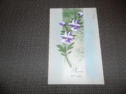 Carte Celluloïd ( 86 )  En Celluloïde  Cellulo - Cartes Postales
