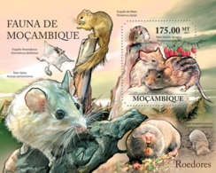 Mozambique 2011 Fauna  Rodents - Mozambique