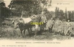 46 Laberaudie, Cp Pionnière (avant 1904), Récolte Du Tabac, Thème Agriculture, Vieux Métiers, Superbe - France