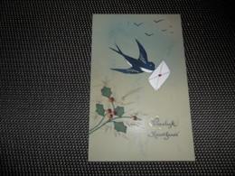 Carte Celluloïd ( 101 )  En Celluloïde  Cellulo - Cartes Postales