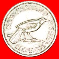 + DRESSED QUEEN (1955-1965): NEW ZEALAND ★ 6 PENCE 1959! LOW START ★ NO RESERVE! - Nouvelle-Zélande