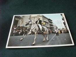 COMUNE DI CASTELTERMINI FESTA IN COSTUME CAVALIERE E CAVALLO HORSE COSTUMI SFILATA - Costumi