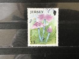 Jersey - Paddenstoelen (33) 2005 - Jersey
