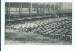 Bruxelles Fédération Colombophile Séquestration De 108.000 Pigeons Dans Le Hall Du Cinquantenaire 1914 - Bruxelles-ville