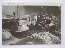 (1959) Environ AVIGNON - Une Distillerie De Lavance Alambic -  Coupure De Presse Originale (encart Photo) - Documents Historiques