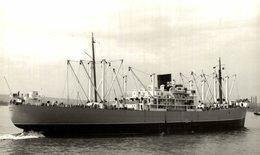 LIMERICK +- 15 * 9 CM BARCO BOAT Voilier - Boats