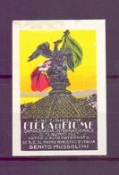 CINDERELLA ERINNOFILIA FIERA CAMPIONARIA DI FIUME 1927   (GIUGN1900B15) - Erinnofilia