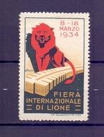 CINDERELLA ERINNOFILIA FIERA INTERNAZIONALE DI LIONE 1934 (GIUGN1900B19) - Erinnofilia