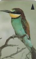 Bahrain - Bird - Merops Apiaster - 46BAHE - Bahrain