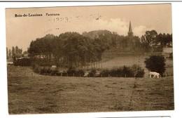 Bois-de-Lessines - Panorama - Circulée En 1945 - Griffe Bois-de-Lessines - Edit. Simoulin-Dupont - 2 Scans - Lessen