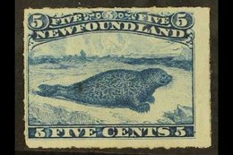 1876-79 5c Blue Common Seal, Rouletted, SG 43, Fine Mint With Original Gum. For More Images, Please Visit Http://www.san - Newfoundland And Labrador