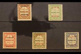 OCCUPATION OF PALESTINE POSTAGE DUE. 1948 Multi Script Wmk - Perf 14 Set, SG PD 17/21,, The Scarce 10m Being Never Hinge - Jordan