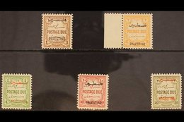 OCCUPATION OF PALESTINE POSTAGE DUE. 1948 Multi Script Wmk - Perf 12 Set, SG PD 25/29, Fine Mint (5 Stamps) For More Ima - Jordan