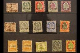 "1903-1911 ""SPECIMEN"" OVERPRINTS KEVII Definitive (wmk Crown CA And Mult Crown CA) Range To 5s Covering Most Values, Fine - Malta (...-1964)"