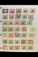 1901-1941 COLLECTION On Leaves, Mint & Used, Inc 1901-05 Wmk Horiz To 1s (x2, One Mint) Inc 1d Used And Wmk Vert Inc ½d  - Papua New Guinea