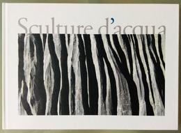 SCULTURE D'ACQUA / Speleologia Idrologia Alpi Prealpi Giulie Alpi Carniche Carnia Chiusaforte Sella Nevea Canin - Storia, Filosofia E Geografia