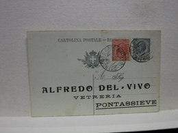 PONTASSIEVE  -- FIRENZE  ---  VINO  - UVA  - ACCESSORI  --  ALFREDO DEL VIVVO  -- VETRERIA - Vigne