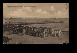 C1315 LIBIA - COLONIE ITALIANE - TRIPOLI ITALIANA - IL MERCATO DEI CAMMELLI NEL PORTO TIMBRO CAVALIERI MALTA SUL RETRO - Libia