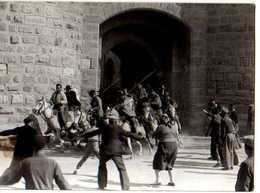 30 AIGUES MORTES Abrivado Photo GEORGE - Aigues-Mortes