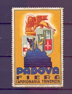 CINDERELLA ERINNOFILIA PADOVA FIERA CAMPIONARIA TRIVENETA   (GIUGN1900B29) - Erinnofilia
