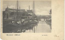 Souvenir D'ALOST : La Dendre - Nels Série 15 N° 4 - Cachet De La Poste 1902 - Aalst