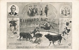 CPA Cirque Circus E. LEONARD & C. Eccentric Comedians Acrobats And Parodists - Circus