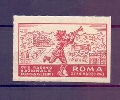 CINDERELLA ERINNOFILIA RADUNO NAZIONALE BERSAGLIERI ROMA 1963   (GIUGN1900B54) - Erinnofilia