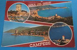 Isola Del Giglio Campese Vedute Cartolina 1988 - Italia