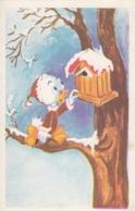 Walt Disney Duck Nephew W Birdie House Old Postcard 1967 - Altri