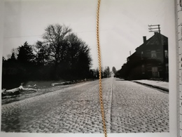 Photo Original 1951, Grimde, Situation Avant Travaux, Rt3 - Tienen