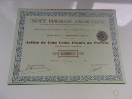 Immobilière KISS MOULOUYA (seulement 260 Titres) BERKANE MAROC - Acciones & Títulos