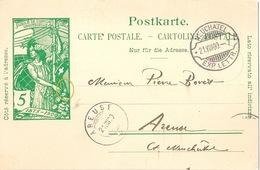 PK 31  UPU  Neuchâtel - Areuse  (Rasierklingenstempel)             1900 - Postwaardestukken