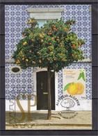Portugal 2019 Algarve Alentejo Lisboa EUROMED Postal Máximo Laranja Naranja Orange Tree Fruit Maximum Maxi Maxicard - Obst & Früchte
