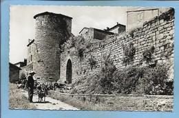 Puycelsi (81) Porte Et Remparts 2scans Berger Avec Son Chien Et Ses Chèvres - France