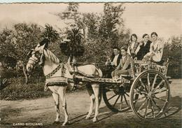 COSTUMI- CARRO SICILIANO, B/N,ANIMATA,VIAGGIATA1948,EDIZ. VITRO,CATANIA,P.A. £.6 SU 3,20, - Costumi
