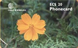 Antigua & Barbuda - ANT-C20, Flower Orange Cosmos, GEM5 (Black), 20 EC$, 2001, Used - Antigua En Barbuda