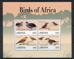 Liberia 2007 Birds Of Africa Sheetlet MUH - Liberia