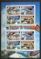 Turks & Caicos Is 2007 WWF Red Tailed Hawk MS MUH - Turks & Caicos