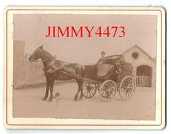CPA - Attelage à Cheval - Un Cabriolet Bien Animé - Carte CDV Tirage Aluminée 1900 - Anciennes (Av. 1900)